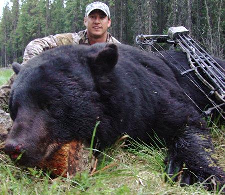 Black Bear Hunting Testimonials Bear Hunts Alberta Canada